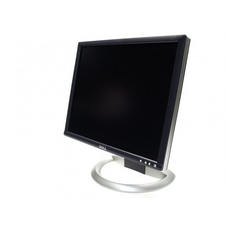 Dell 1905FP 19 inch